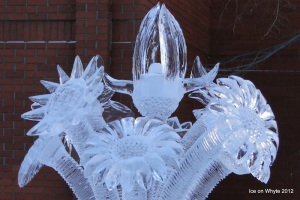 ice on whyte 3