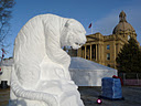 ice on whyte 8