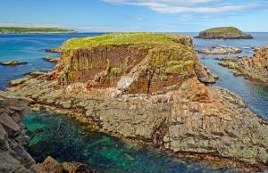 Newfoundland - Puffin Nest Island