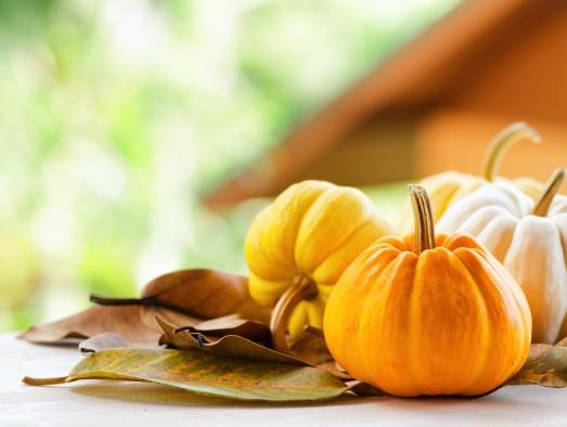 pumpkin_141564328