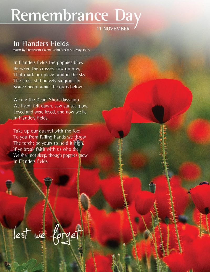 Poppy sandman says this year november 11th not only marks remembrance day but the 100th anniversary of the beginning of world war i the poppy has a long association with mightylinksfo